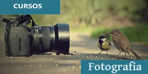 curso de fotografia senai