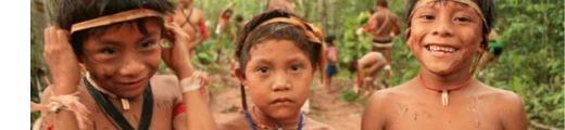 aprendizagem da língua indígena